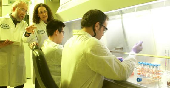 SRI researchers work in a lab